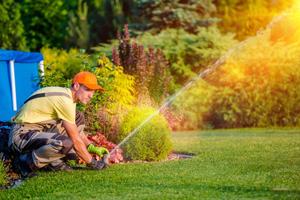 professional sprinkler system