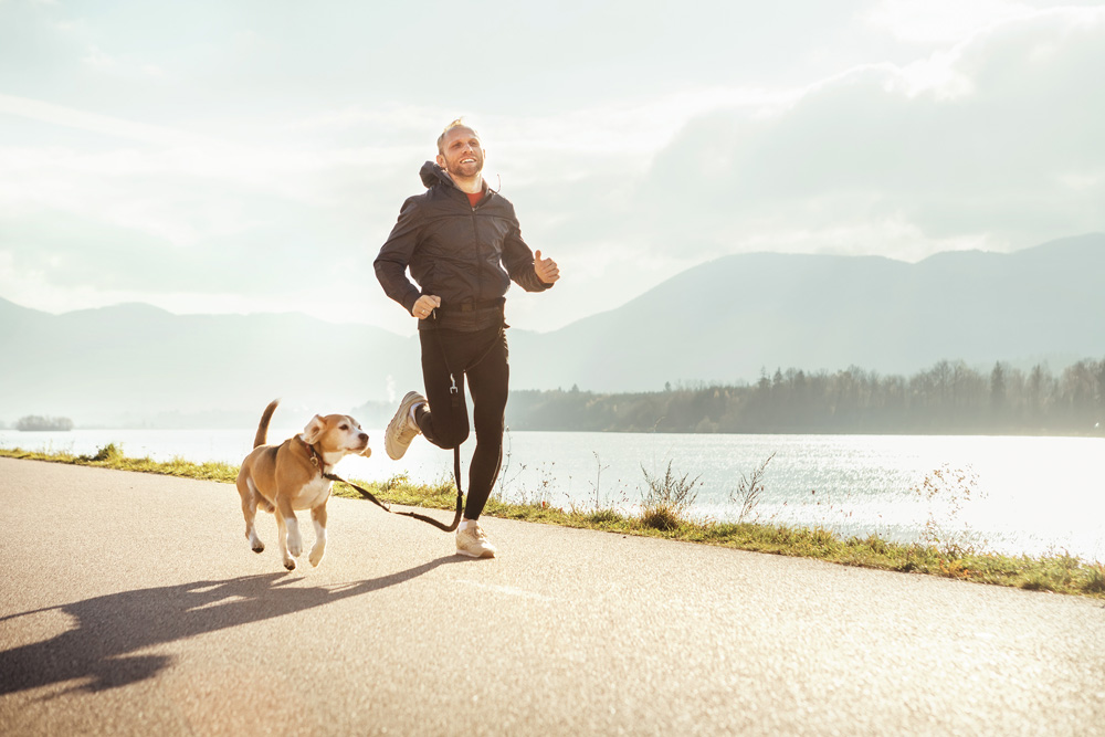 Running with your dog - Treating Insomnia In Dogs