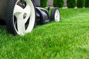 landscaping in Idaho Falls