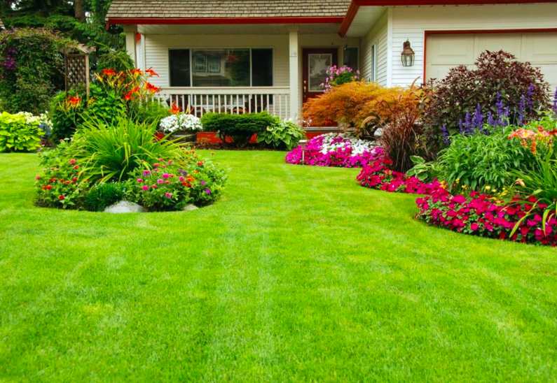 Front yard with great landscape design